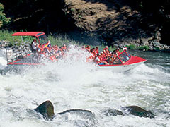 Photo of jet boat on Rogue River